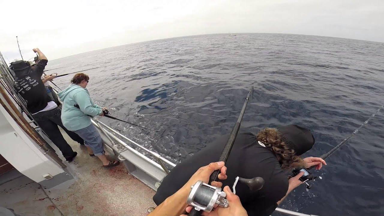 Yellowfin Tuna Fishing Out Of San Diego Hd Youtube