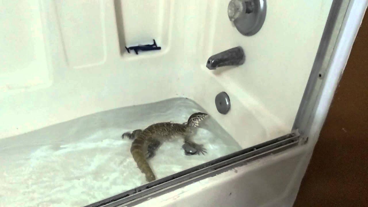 how to make a bathtub buddy