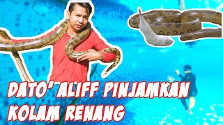 SWIMMING WITH ANACONDA IN SWIMMING POOL