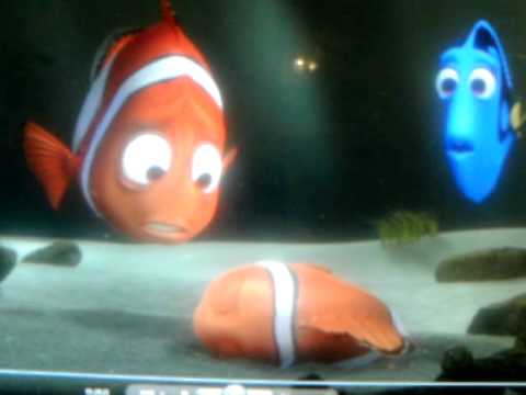 i thought i lost you finding nemo version youtube