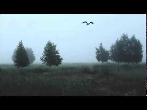 Клип Dj Smash - Птица