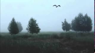 DJ Smash - в небе птица