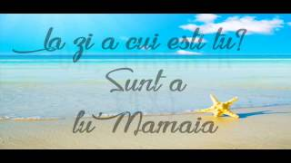 Delia feat Speak A lu' Mamaia (Lyrics) 2014
