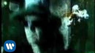 El Tri - Parece fácil (Video Oficial)
