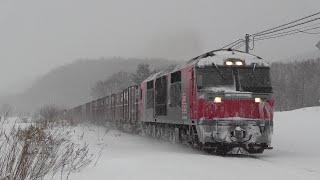 [4K] 石北本線貨物列車 (2020年2月17日)