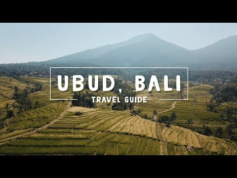 WOW air travel guide application - UBUD, BALI