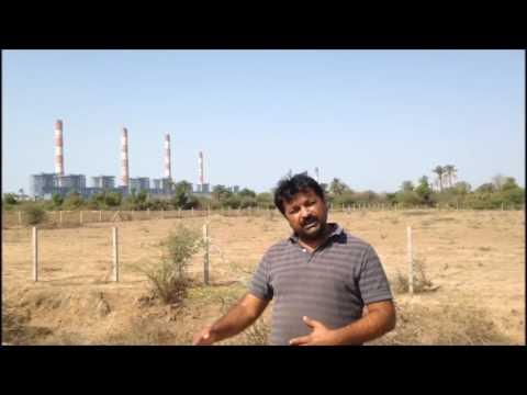 Bharat Patel on the impact of Tata Mundra power project on the fishermen and marine ecology