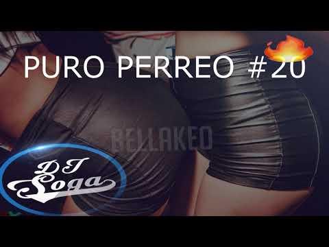 PURO PERREO #19  - TE EXPLOTA LA PREVIA 2019 - DJ SOGA 💣