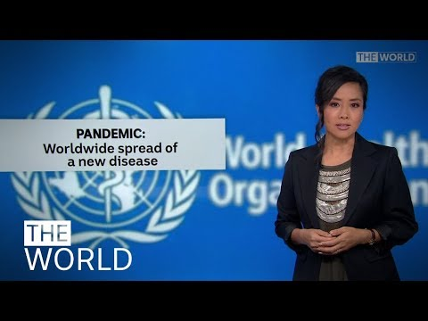 what-is-a-pandemic-and-will-covid-19-be-declared-as-one?-|-the-world
