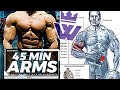 16 Exercises for Bigger ARMS WORKOUT