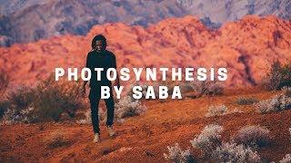 photosynthesis | saba
