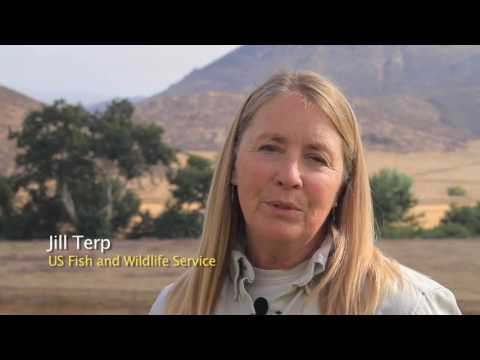 Conservation+Outreach+Programs+of+the+Earth+Discovery+Institute HD