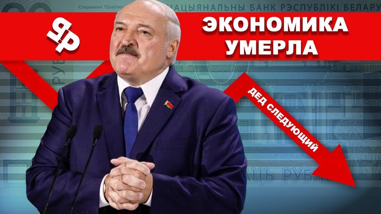 Беларусь на пороге голода / Полки магазинов будут пустеть