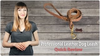 Professional Leather Dog Leash - Leather Snake - Fordogtrainers Review