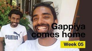 Gappiya Comes Home - Fifth Week