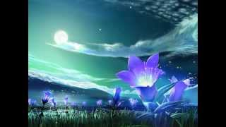 NEW Sean Beeson Relaxing Music for Studying and Sleeping - Sean Beeson