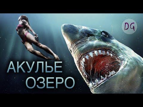 Вопрос: Почему после просмотра фильма Челюсти , не хочется купаться в море?