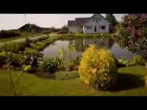 Estonian nature  beauty
