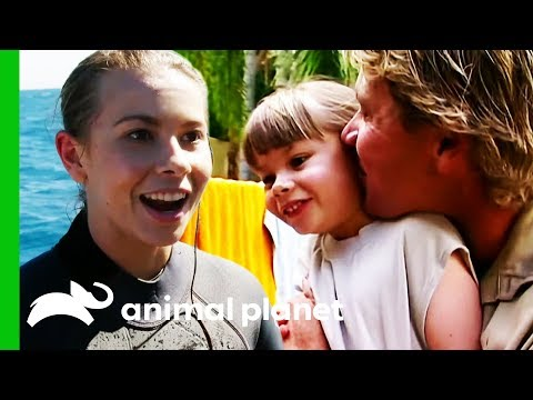 Bindi Irwin's Best Moments From Season 2 | Crikey! It's The Irwins