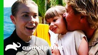 Gambar cover Bindi Irwin's Best Moments From Season 2 | Crikey! It's The Irwins