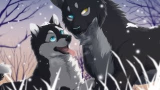 Anime Wolves -  Last Christmas (LATE SPECIAL)