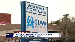 Possible human organ found at Detroit water treatment plant