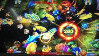 how to play king of tiger strike fishing game