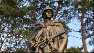 Советским воинам, погибшим в ВОВ 1941 1945, посвящается...