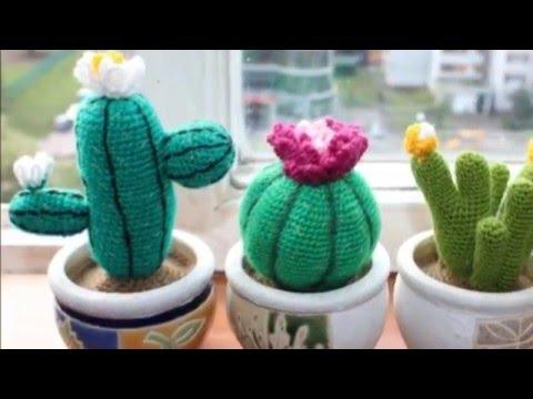 восхитительные цветы кактусы вязанные крючком 30 идей Youtube
