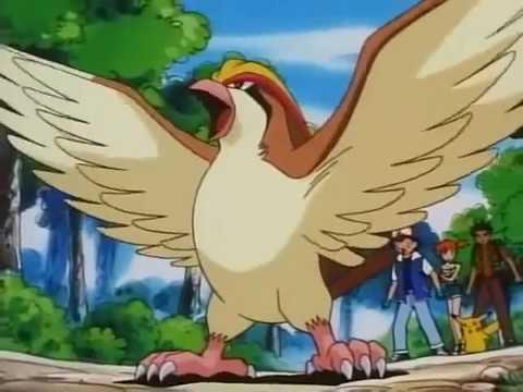Pokémon - Pidgeotto Evolui Pra Pidgeot (Despedida De Pidgeot)