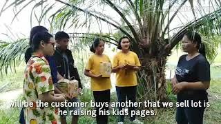 Organic rice yaikum