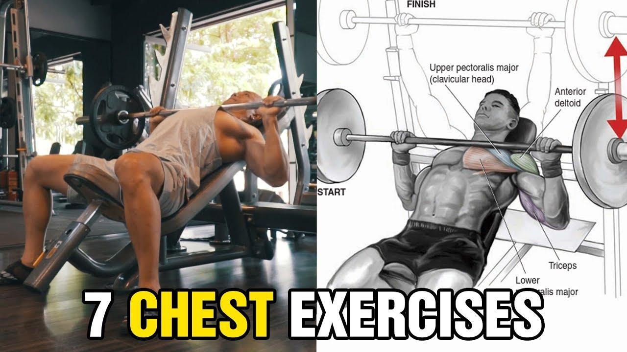 7 Bài Tập Ngực Hiệu Quả Cho Người Mới Tập Gym