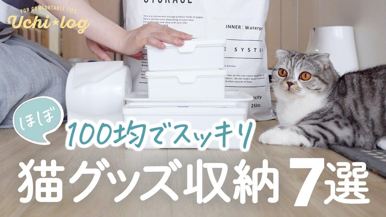 【収納】猫グッズをすっきり収納・おすすめシンプルアイテム7選/100均/ダイソー/50代主婦