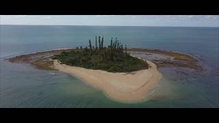 ニューカレドニア北部トリップ  New Caledonia North Trip