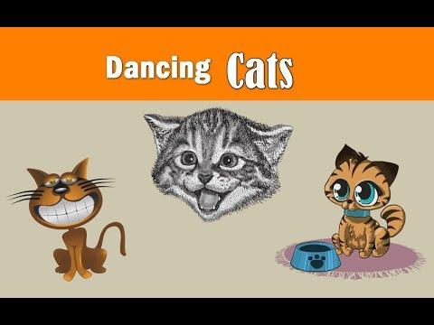 Crazy Dancing Cats - Crazy Funny Pets