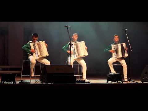 Трио 'Головокружительный аккордеон'