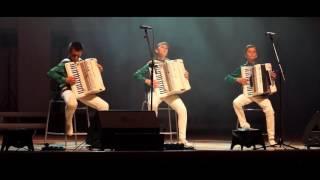 """Трио """"Головокружительный аккордеон"""""""