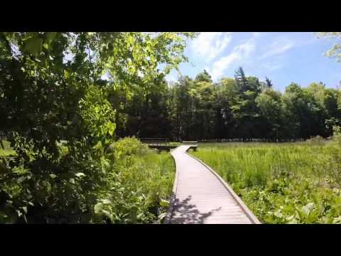 Springwater Conservation Area