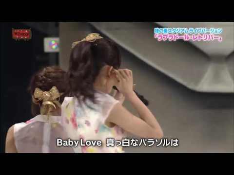 AKB48 - Labrador Retriever
