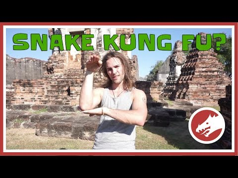 How To Use Snake Kung Fu!