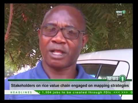 Stakeholders on Rice value chain engaged on mapping strategies 16