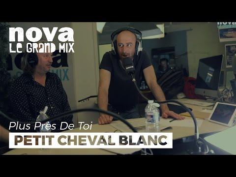 Petit Cheval Blanc et les petits enfants | Plus Près De Toi