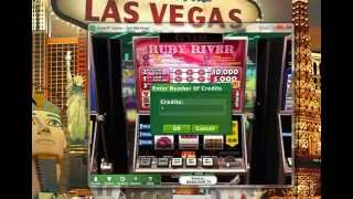 Hoyle casino-Slot Machine
