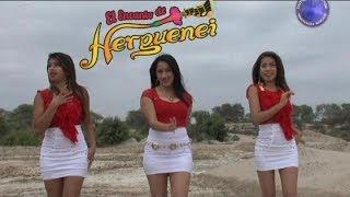 MIX SERRANIA 2 - EL ENCANTO DE HERGUENEI VIDEO CLIP 2014