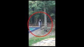 Video Fighting a Killer Clown in My Backyard Before Halloween (Clown Sighting Fight) download MP3, 3GP, MP4, WEBM, AVI, FLV Juli 2018