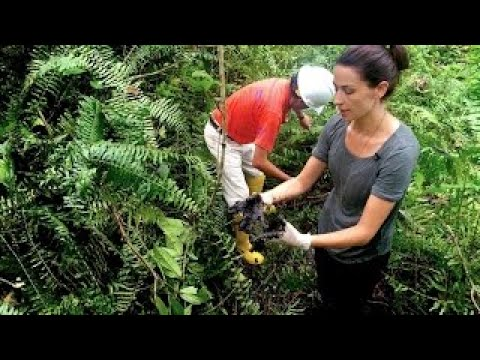Chevron vs. the Amazon Full Documentary