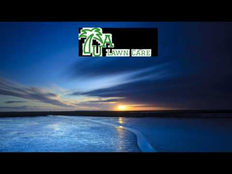 READ BOOKS AND LISTEN TO RICH SUCCESSFUL PEOPLE UA Lawncare - Jacksonville, Florida