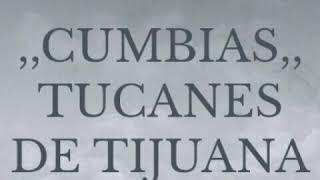 Cumbias,tucanes de tijuana.