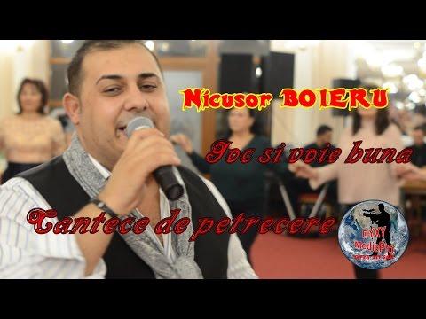 Nicusor BOIERU - Program de joc si voie buna - Cantece de petrecere - Live 2017