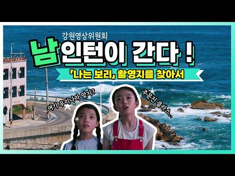 강원영상위 인턴 브이로그 '남인턴이 간다 !' - 영화 『나는 보리』 촬영지를 찾아서